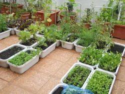 Garden Construction Services in India