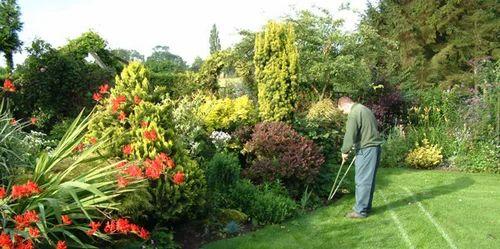 Gardening Service Garden Maintenance Service Service Provider