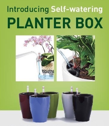 better gardening self growing planters inside with wendy plants the watering planter lechuza house