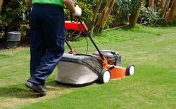 Floor Gardening Service