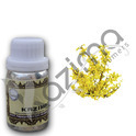 KAZIMA 100% Pure Natural Galbanum Essential Oil