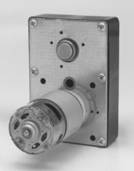 Permanent Magnet DC Geared Motor