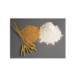 Wheat Gluten - Gluten Powder Wholesaler & Wholesale Dealers