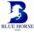 Blue Horse Enterprises