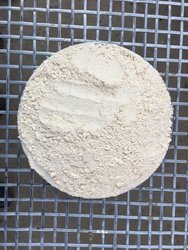 Indian Organic Wheat Flour, High in Protein