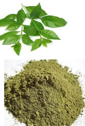 Henna Leaves Powder, Pack Size: 1 kg, for Personal