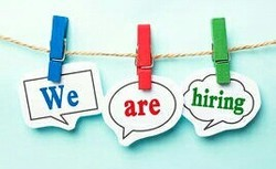 Placement & Staffing Services