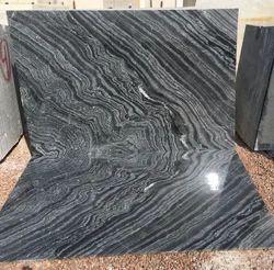 Jurassic Marble