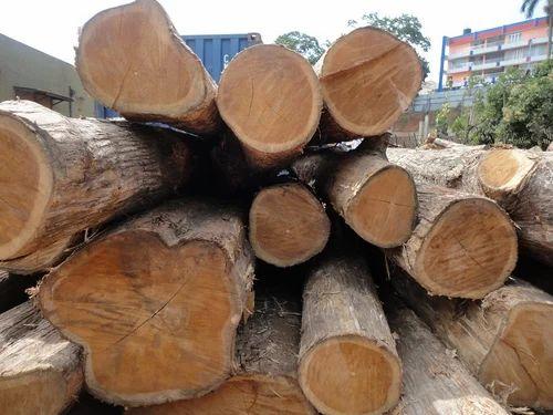 Hardwood Timber Round Logs Teak Wood Log Wholesaler From