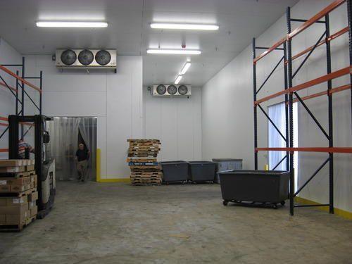 cold design fruit storage thesis