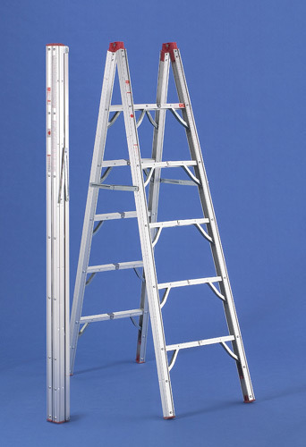 Extendable ladders - A Type Extension Ladder Manufacturer from Chennai