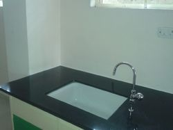 Silver Laboratory Sink