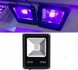 Ultraviolet Lights Uv Exposing Lights Latest Price