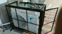 Air Conditioner Rental Services