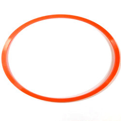 Orange Back Up Ring