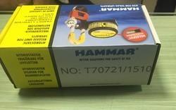 Hru Hammer