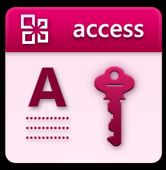 Microsoft Access Training for Corporate