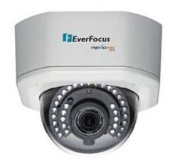 Everfocus HD Outdoor Dome Cameras