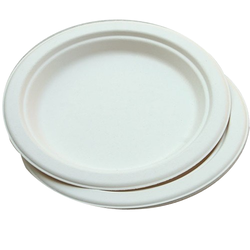 Paper Disposable Plates  sc 1 st  IndiaMART & Paper Plate in Jalandhar ???? ?? ????? ?????? ...