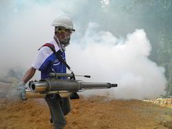 Smoke Pest Control Services