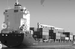 Refrigerated Cargo Services