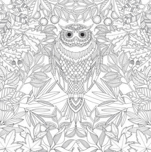 Secret Garden Adult Colouring Book At Rs 695/unit Coloring Book ID:  11608466412