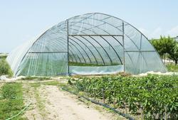 greenhouse construction polyethylene sheet
