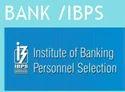 Jobs In Bank/ibps
