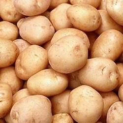 Fresh Farm Potato, No Preservatives, Packaging: Plastic Bag or Polythen