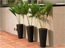 Napa Planter