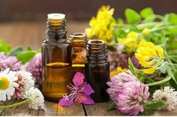 Electro-homoeopathy  Treatment