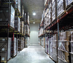 Logistic Cold Storage Room, Frozen Cold Storage, कोल्ड