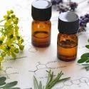 Ambrette Seeds Oil
