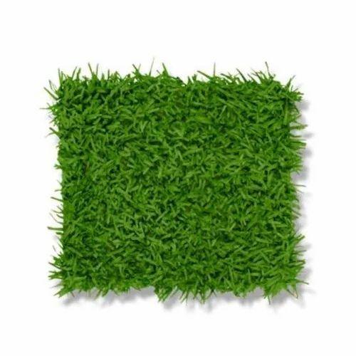 Green Grass Mat At Rs 50 Square Feet S कृत्रिम घास की