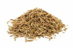Syzgium Cumin Seeds