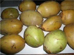 Orgnic Coconut