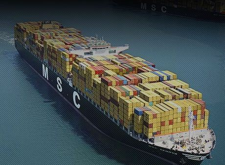 Exporter of Ship Exprot & Shipping Services by Msc Agency