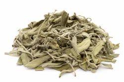 Best Quality Dried Sage