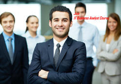 Business Analyst Program Syllabus