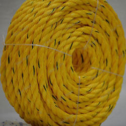 4MM to 24MM PP Danline Rope