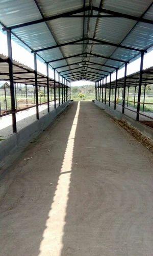 Dairy Farm Shed