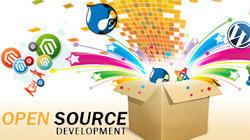 Open Source Web Development, With 24*7 Support