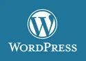 Wordpress Application Development Services