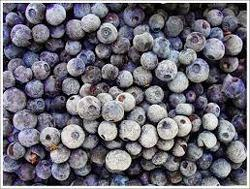 Frozen Blueberry - Wholesale Price & Mandi Rate for IQF Blueberry