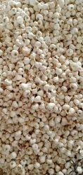 White Pan India Fresh garlic, Garlic Size: 28-35 Mm, 50g