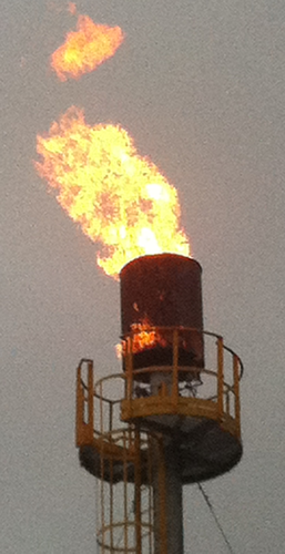 Waste Oil Disposal >> Gas Flare System - Gas Flare Systems Manufacturer from Noida