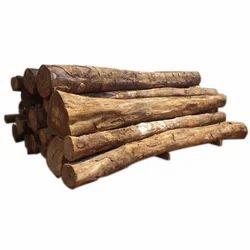 Gmelina Timber Logs
