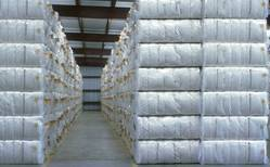 Sharda Group White Raw Cotton Bale, For Textile Industries
