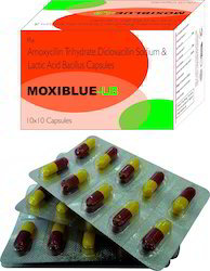Amoxycillin Trihydrate, Dicloxacillin Sodium & Lactic Acid