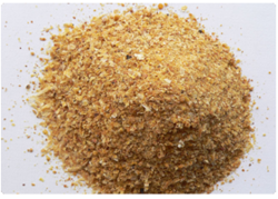 Maize Bran - Wholesale Price for Maize Bran in India